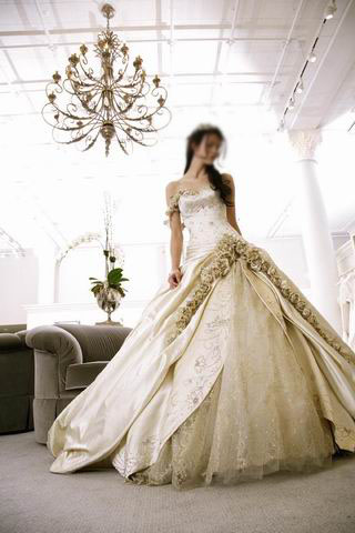 Our online shop has a lot of Indian wedding dress collection