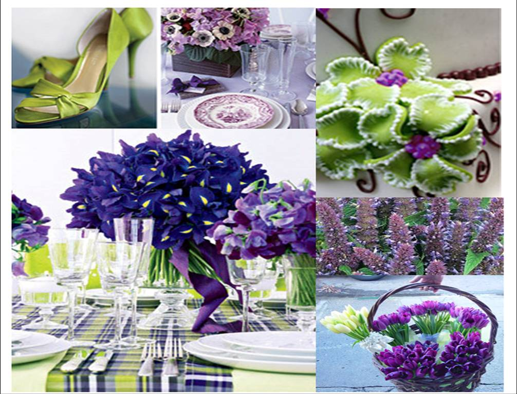 I believe a purple and green decoration is perfect for the