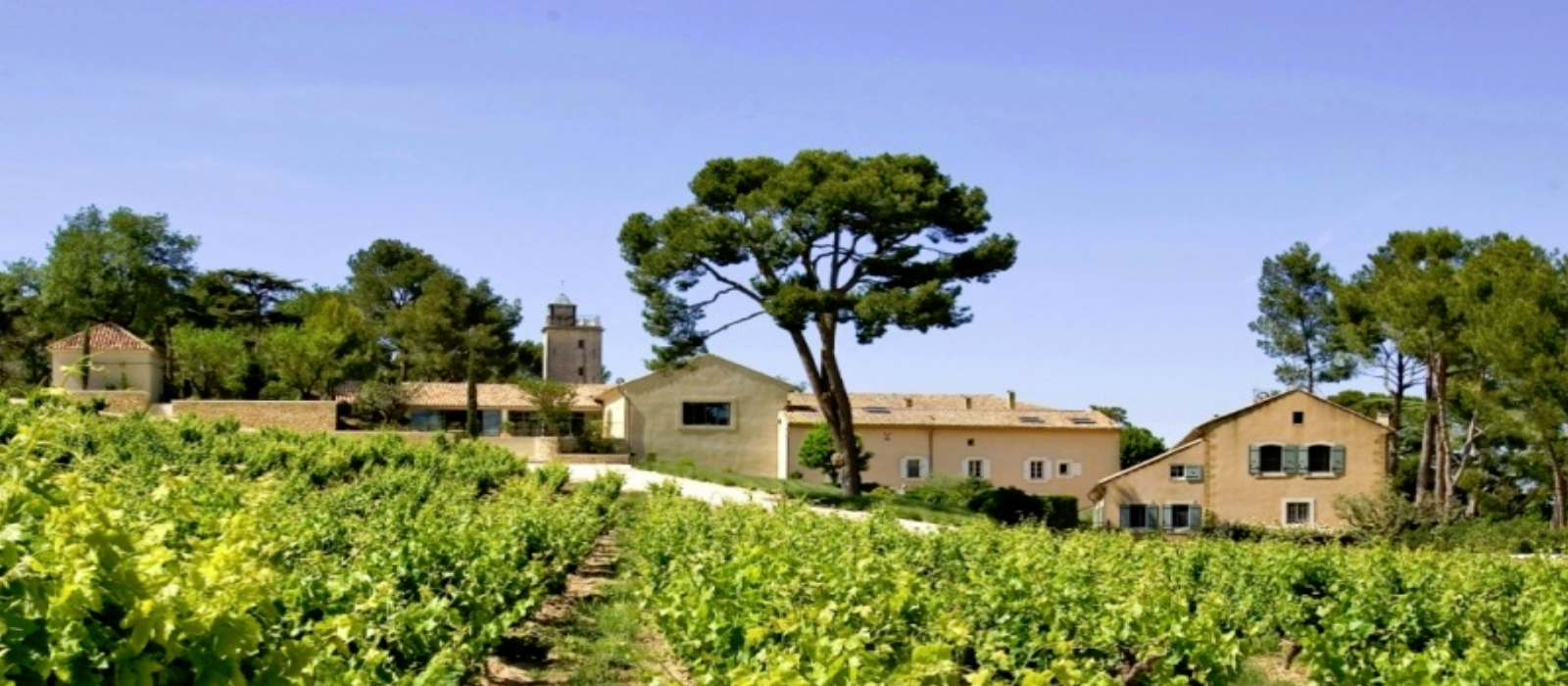 CHARMING WEDDING VENUE IN THE HEART OF PROVENCE 2