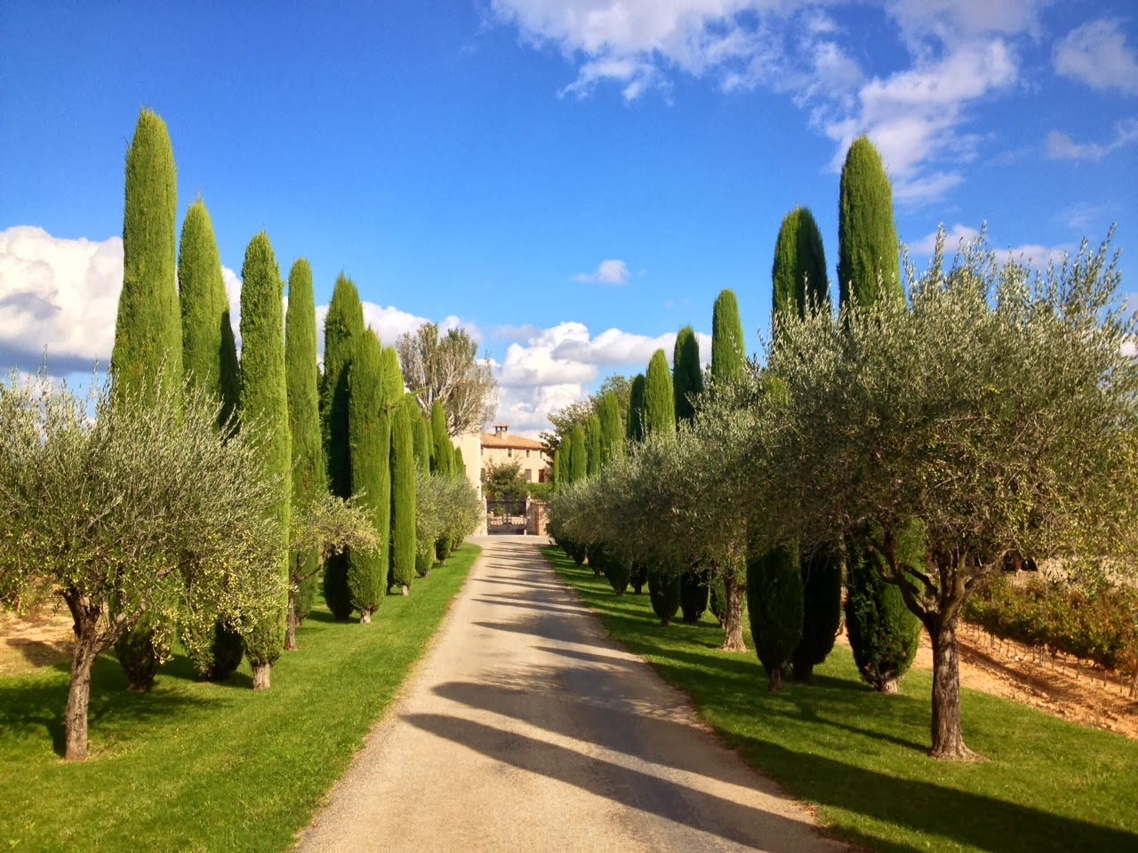 lovely wedding package in provence 10