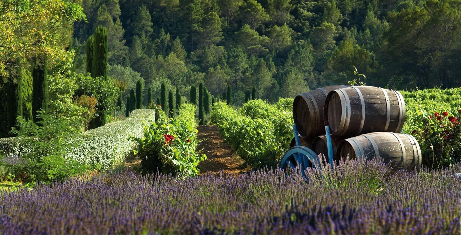 lovely wedding package in provence 4